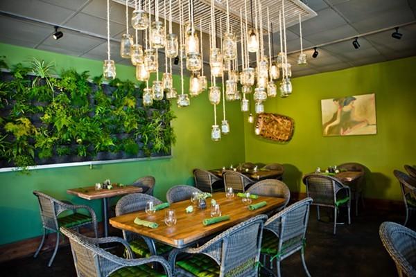 Ferns oasis-like  interior