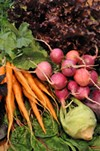 <p>FINISH YOUR VEGGIES: Carrots, radishes, kohlrabi, spinach and lettuce from New Town Farms</p>