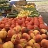 Food News: Center City Green Market opens this weekend
