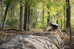 BEN PREMEAUX - FORCE OF NATURE: Artist Daniel McCormick examines one of his ecological sculptures.