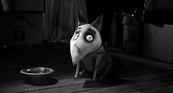 Frankenweenie (Photo: Disney)