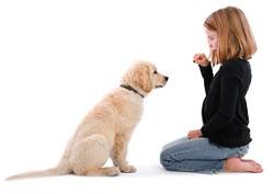 girl-training-puppy
