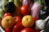 Going green: VegFest venerates all things veggie