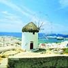 Six weeks exploring Greek cuisine