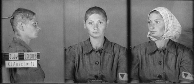 female holocaust experiences essay My museum expectations were, to see videos, photos, and artifacts of the holocaust get to experience how it changed lives of men women and children the expectations that i had were not different from my actual experience everything that i was expecting, i witnessed from the photographs, to the videos, even the actual beds, shoes, hair.