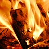 Secularists to burn New Testament in protest of abortion bomb plot