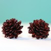 Item of the Week: Gourd Jewelry