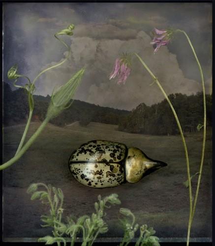 "John Grant, ""Birds of a Feather"""