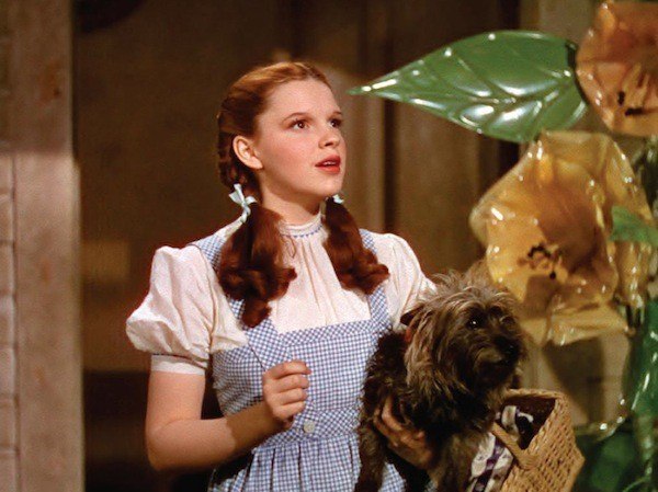 Judy Garland in The Wizard of Oz (Photo: Warner Bros.)