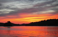 Lake Norman becomes North Carolina's third Community Wildlife Habitat