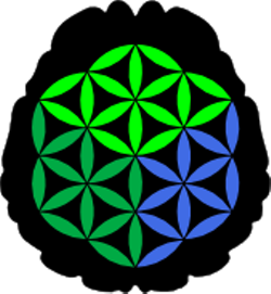 9c9040dc_logo_novabrains.png