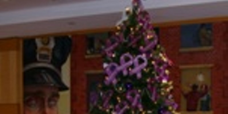 Lighting of the domestic violence holiday tree