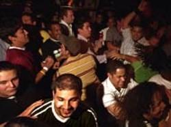 RADOK - Los Amigos Loco: Los Amigos Invisibles fans shake their tailfeathers