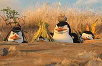 Penguins again rule in second <i>Madagascar</i>