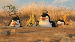 DREAMWORKS ANIMATION - MARCH OF THE PENGUINS: Kowalski, Rico, Skipper and Private prepare to make life miserable for a group of tourists in Madagascar: Escape 2 Africa.
