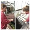 Mindy Robinson give me a tour of Tega Hills Farm