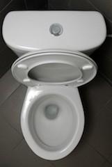 modern-toilet-by-benedeki