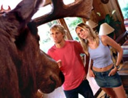 FRANK CONNOR / WARNER - MOOSE AND SQUIRRELLY Nutty couple Owen - Wilson and Sara Foster both have a head for scams - in The Big Bounce