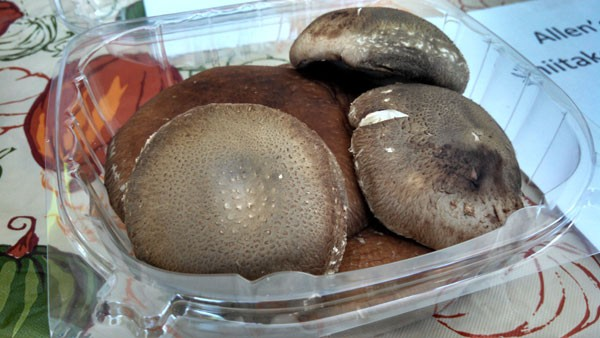 Mushrooms from Allens Farm