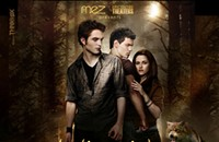 Ladies, are you excited about <em>New Moon</em>?