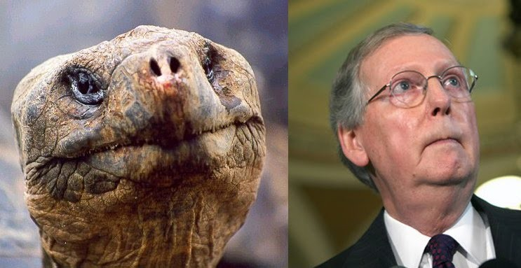 One of these is Sen. Mitch McConnell