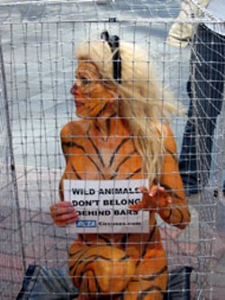 TIMOTHY C. DAVIS - PETA supporter strips the message to its bare - essentials.