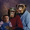 Tea Party honcho Marilyn Davenport sends e-mail of Obama as a chimp