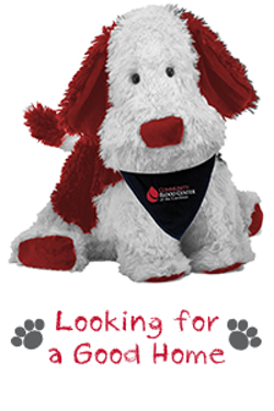 a5a32fb0_puppies_for_patients.png
