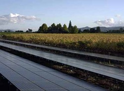 Solar panels at Honig Winery