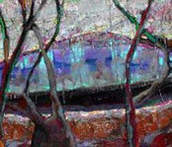 TANGLED LAKE  by Brian Rutenberg