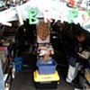 The brave new world of Occupy Wall Street