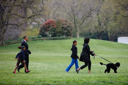 The Obamas and their Portuguese Water Dog, Bo.