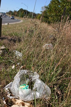CATALINA KULCZAR - Trashed: A typical interstate roadside.
