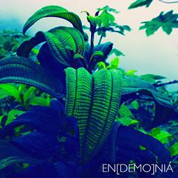 chocala_endemonia.png