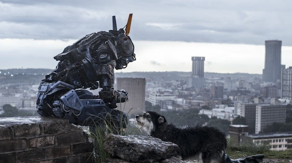 Chappie (Photo: Sony)