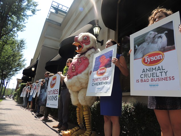 Protesters stood silently in front of Harris Teeter through the lunch hour. - RYAN PITKIN