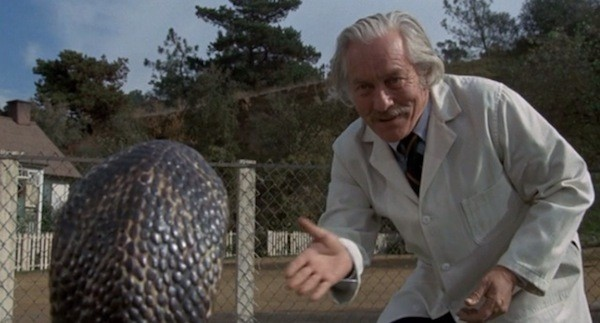 Strother Martin in Sssssss (Photo: Shout! Factory)