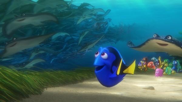 Finding Dory (Photo: Disney-Pixar)