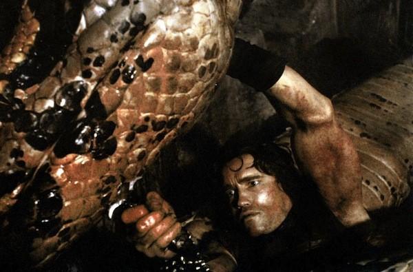 Arnold Schwarzenegger in Conan the Barbarian (Photo: Universal)