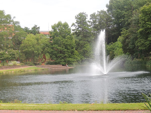 The UNC Charlotte Police & Public Safety department offers rape aggression defense classes to female students worried about walking alone on campus. - RYAN PITKIN