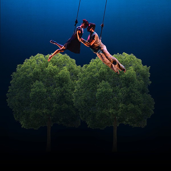 Sarah Small and Javier Gonzalez float above a tree line.