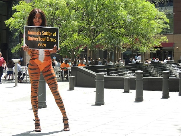 Samantha Paraison stood in front of the Bank of America Coroporate Center during lunchtime today to protest the arrival of the UniverSoul Circus. (Photo by Ryan Pitkin)