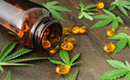 CBD Oil Ireland Discuss Some Of The Many Benefits of CBD Capsules