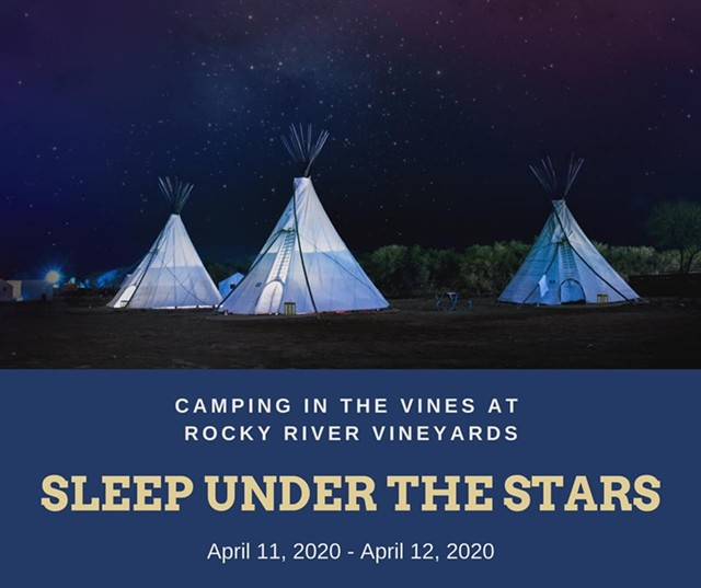 camping_in_the_vines_2020.jpg