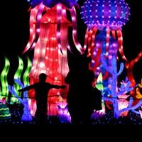 Chinese Lantern Festival kicks with multicolored art