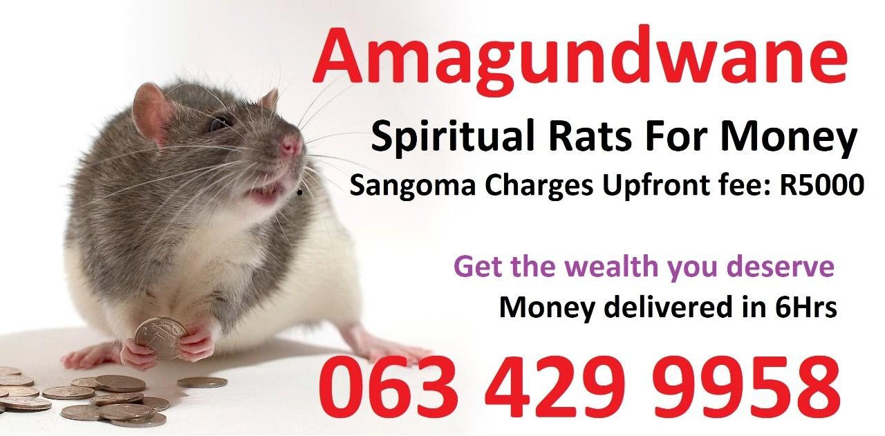 Money spells Johannesburg durban cape town Spiritual Rats