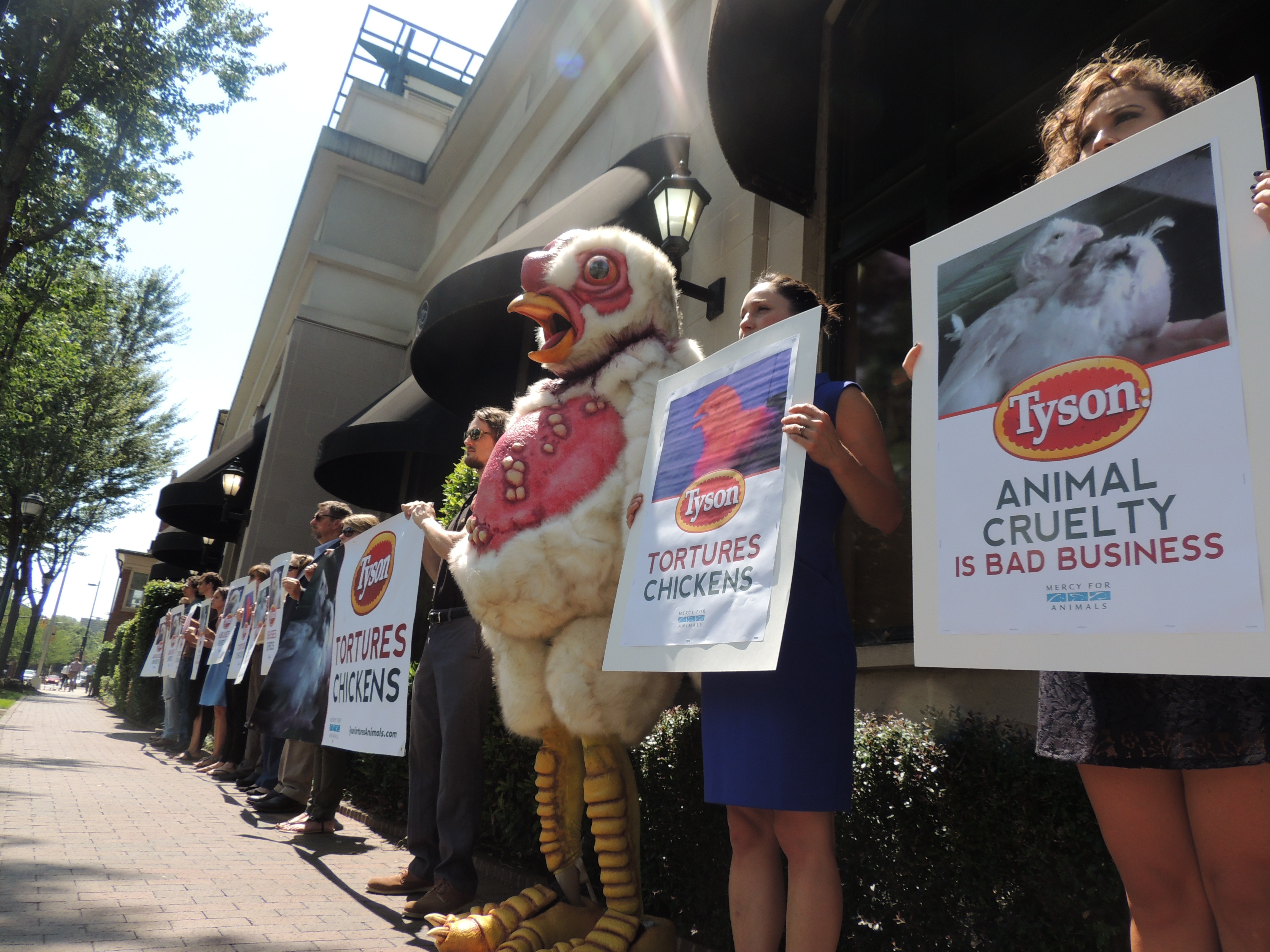 click to enlarge protesters stood silently in front of harris teeter through the lunch hour ryan pitkin - Harris Teeter Christmas Hours