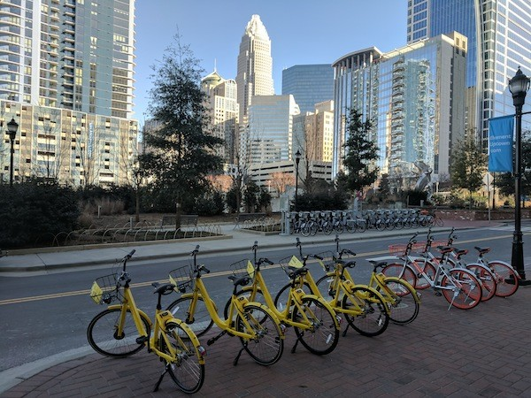 A bevy of bike shares: Dockless bikes on West Martin Luther King Jr. Boulevard, with a B-cycle docking station in the foreground.