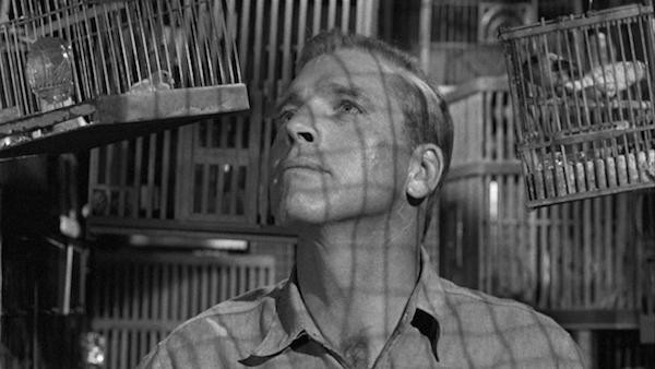 Burt Lancaster in Birdman of Alcatraz (Photo: Olive & MGM)