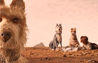 <i>I Feel Pretty, Isle of Dogs, Rampage</i> among new home entertainment titles